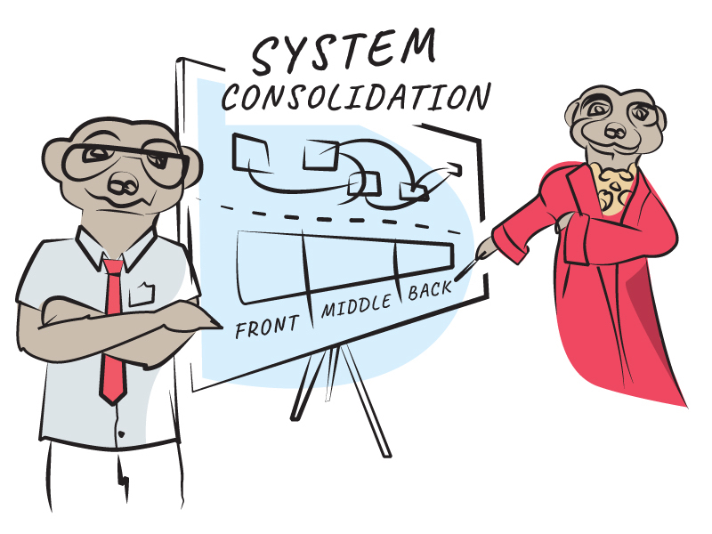 System consolidation will solve all your operational problems, Sergei. Simples!